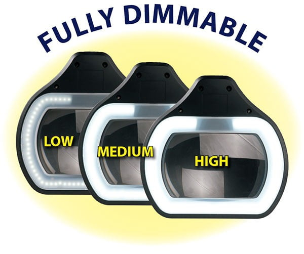 "LED Settings for Accu-Lite™ 6.85"" Rectangle LED Magnifier"